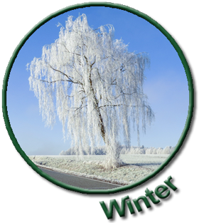 linker winter